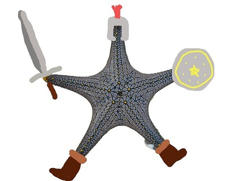 starfish-281734_1920-removebg-preview