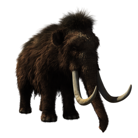 woolly-mammoth-2722882_1920
