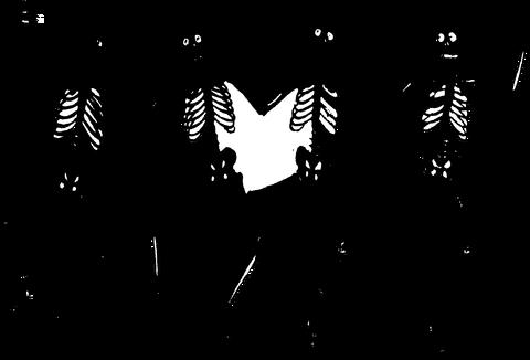 skeletons-303877_1280
