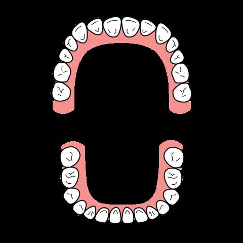 dental_formula_type_square (1)