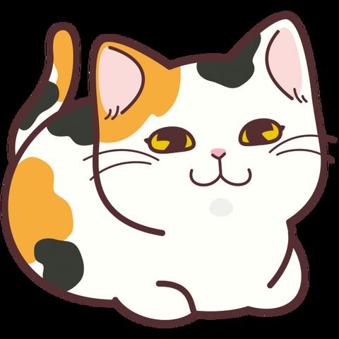 【これは】 猫さん、専用のコタツを買ってもらいご満悦【かわいい】