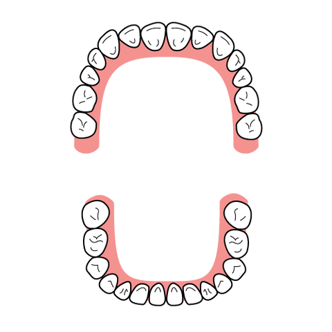 dental_formula_type_square