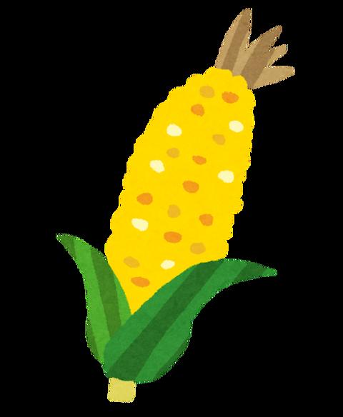 vegetable_corn