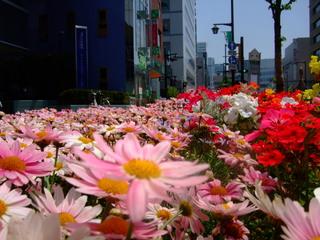 歩道の増設花壇