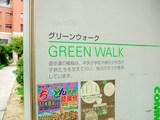 GREEN WALK 中央通り側