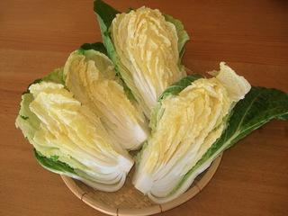 白菜をざるに並べる