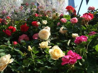 クリスタルブーケはバラがいっぱい