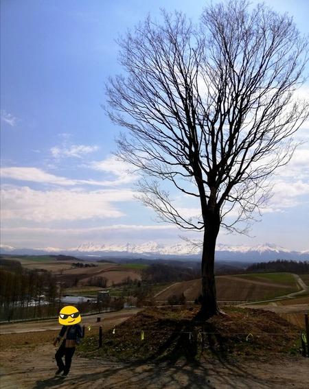 PhotoGrid_1578980178459