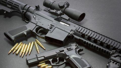Gun MAR172019 01
