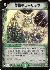 card100053605_1