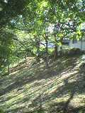 ありんこ山から広場へ.jpg