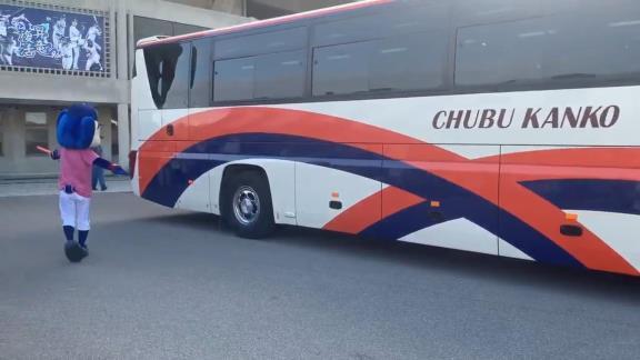 中日・ドアラ、バスを誘導する【動画】