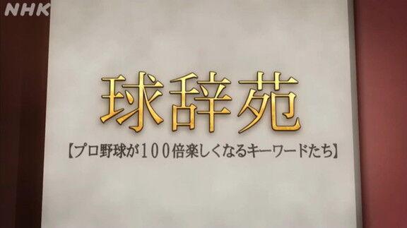 3月13日放送 球辞苑「DH(指名打者)」