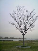 2006032402