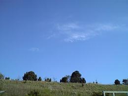 2008041901