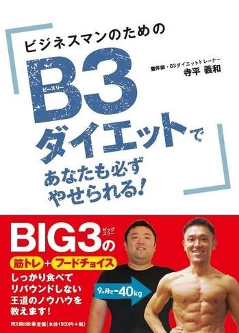 53811 B3ダイエット
