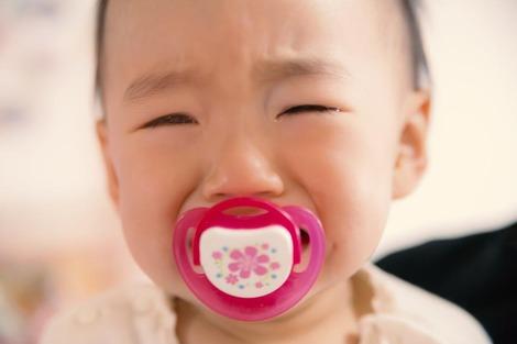 【悲報】本田翼「街の赤ちゃんは無視する、同じ人間なので」
