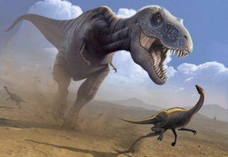 【悲報】ティラノサウルスさん、やっぱりただの可愛くてデカい鳥だった・・・