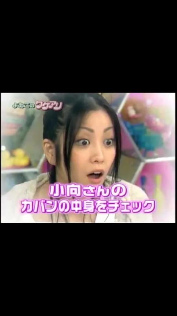 小 向 美奈子 カバン