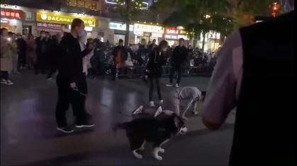 【動画】中国にリアル天竜人が現れるwwwwwwwwwwww