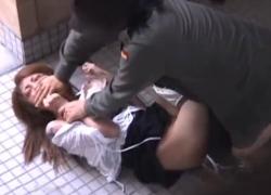 【公衆便所レイプ】王道 トイレに入った女を狙って強姦 泣き叫ぶ女の洋服をはがし濡れてないそこへねじ込む