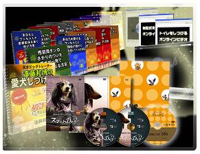 犬のしつけ遠藤05