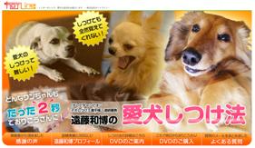 犬のしつけ遠藤01