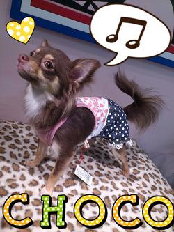 2012-05-22-23-28-11_deco