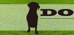ドギー・パーク(DOGGY PARK)