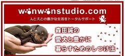 犬のしつけ森田02
