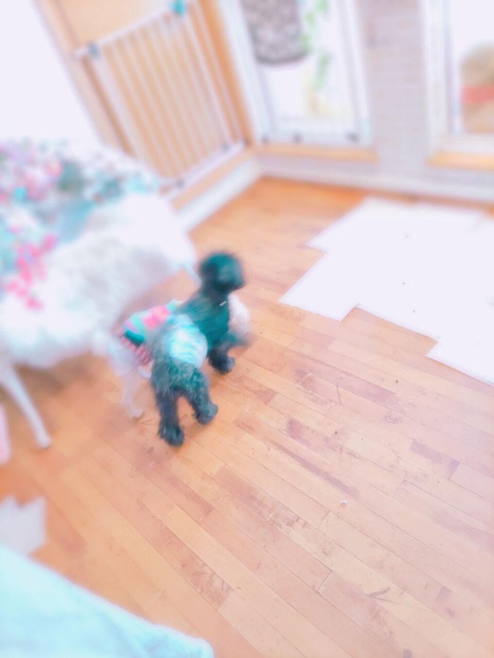 21-01-10-10-59-43-666_photo