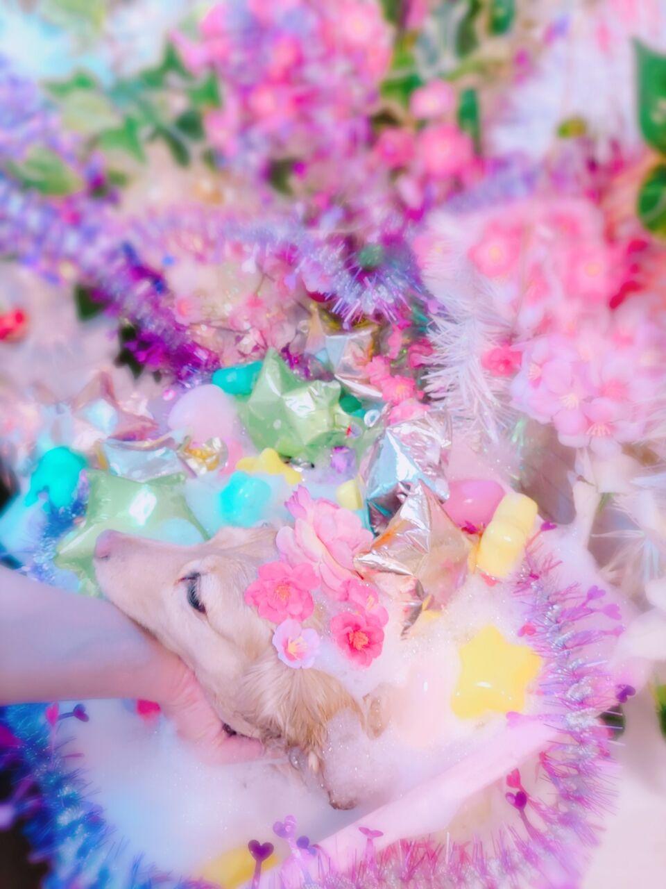 21-02-12-14-03-10-101_photo