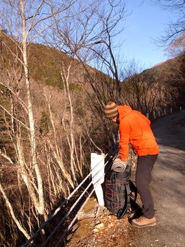 小川峪林道