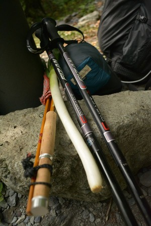 rod,leek and trekking pole