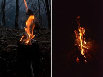 woodstove と焚火