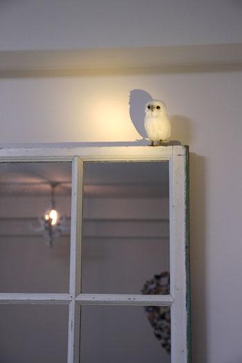 フェイク窓鏡とふくろう