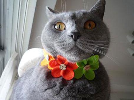 お花のチョーカー