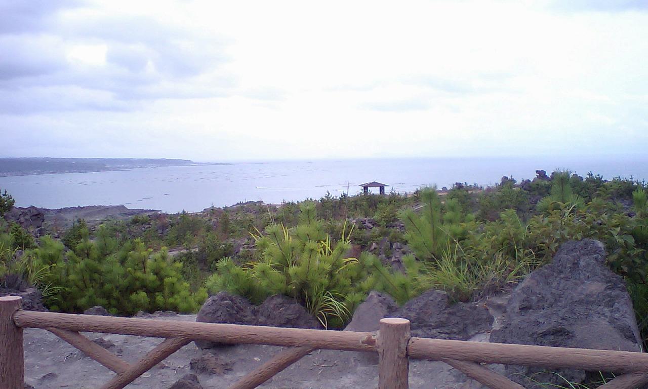 HI3A0178桜島より海岸を望む