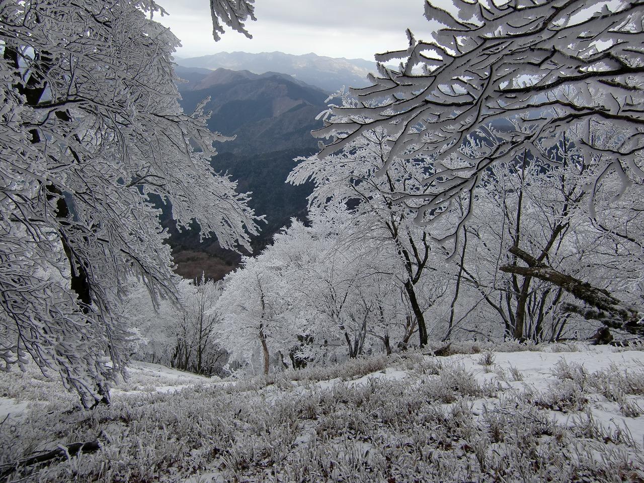 CIMG0282 snowy scene