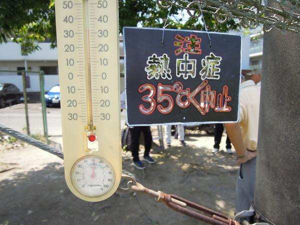 35℃プレート