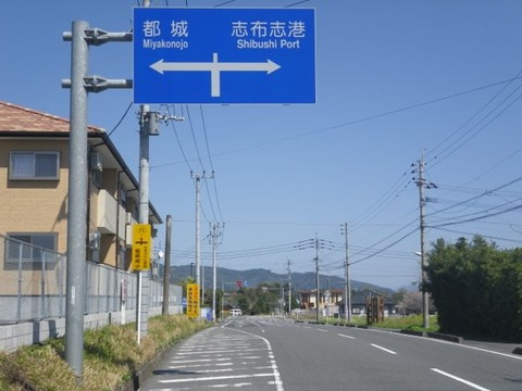 acc7b491.jpg