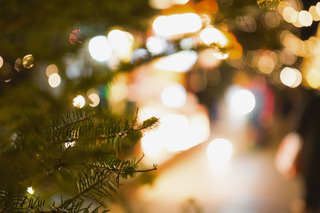 今年はクリぼっちにも過ごしやすい? みんなのクリスマスを検証