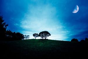 星からのメッセージ・冬至からの3ヶ月で何を手放す?