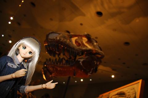 USJ、大阪自然史博物館 351-2