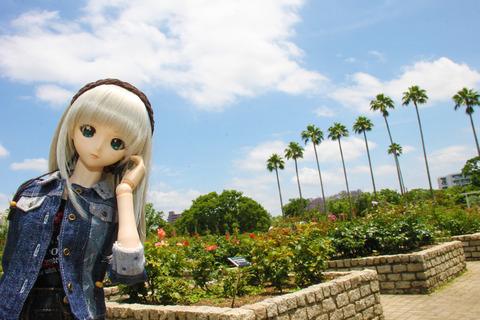 USJ、大阪自然史博物館 457-2