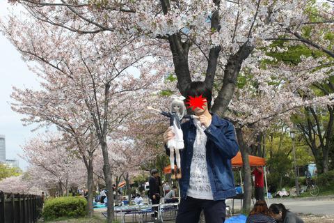 大阪城公園花見 024-2