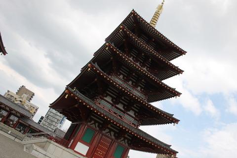 USJ、大阪自然史博物館 497