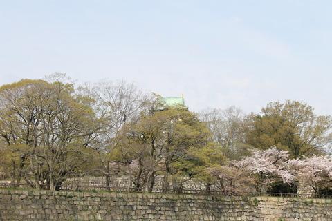 大阪城公園花見 002