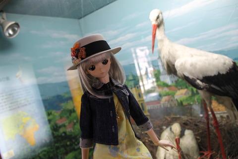 天王寺動物園 088
