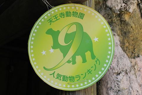 天王寺動物園 026